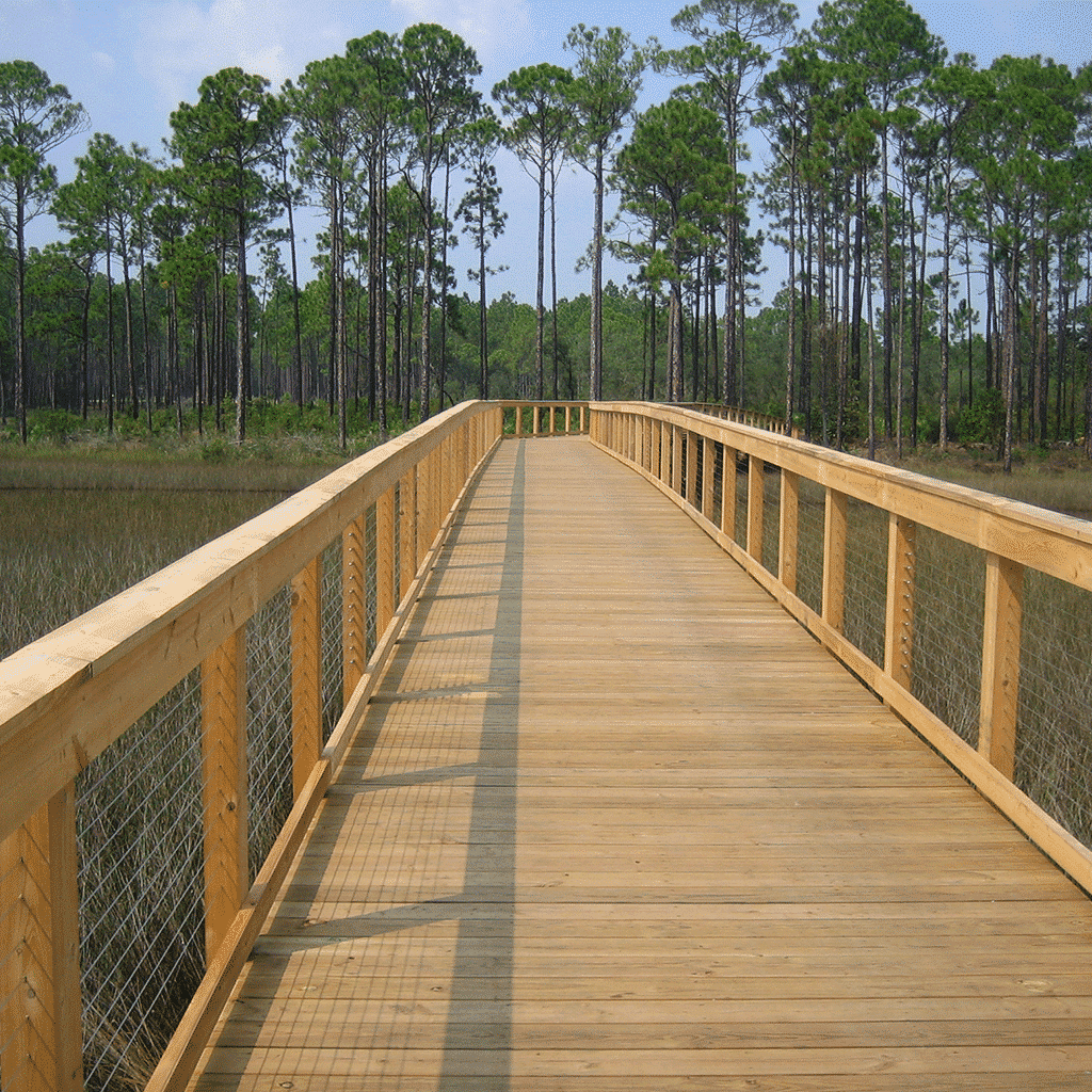 Marshland Wood Walkway with Cable Railing